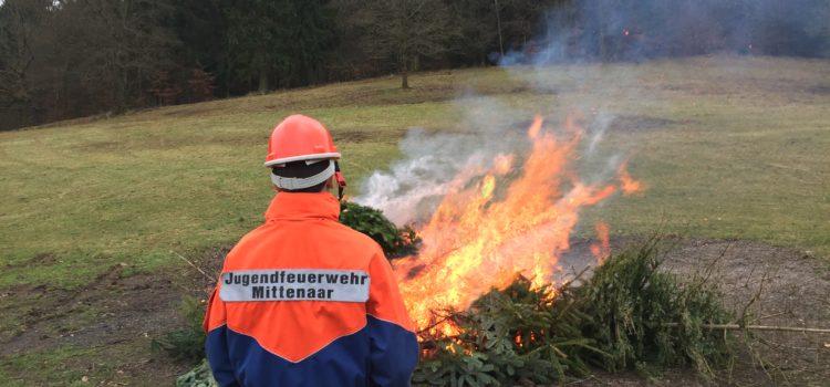 In Ballersbach werden die Weihnachtsbäume abgeholt