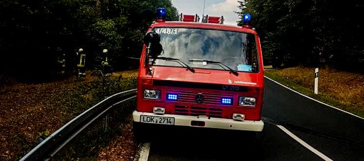 Einsatz 23/2018 Flächenbrand in Offenbach
