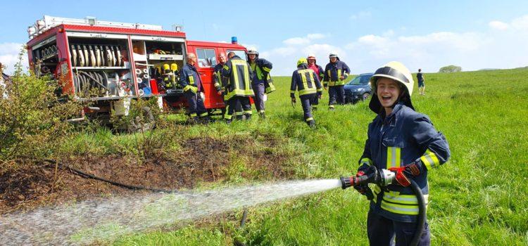 """Einsatz 12/2019 """"Feuer 1 – Heckenbrand"""""""