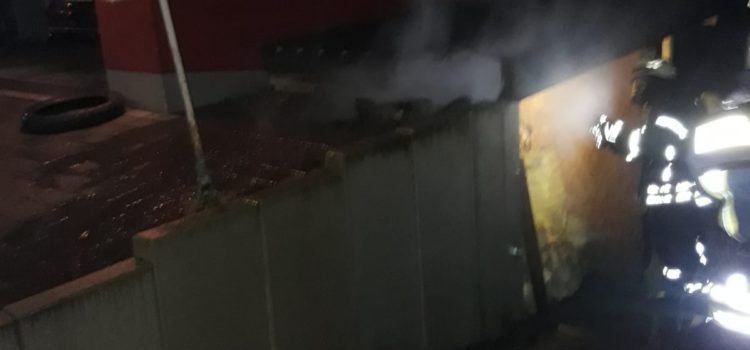 "Einsatz 29/2019 ""Mülltonnenbrand an Gebäude"""